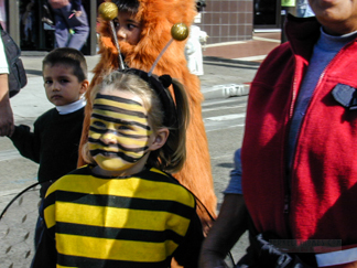 Thousand Oaks School - Bee Girl Costume