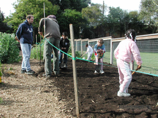 Thousand Oaks School - Planting